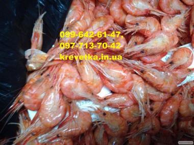 Чорноморська креветка продам