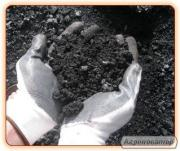 Ископаемый уголь