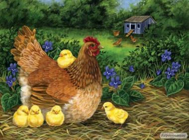 Цыплята, утята, гусята, курочки