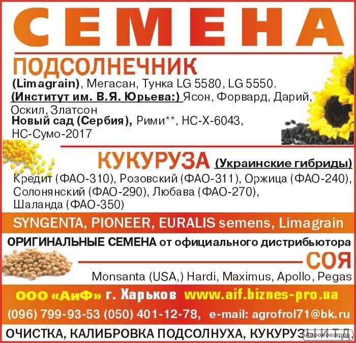 посевной материал кукурузы гибрид ЛЮБАВА ФАО-279