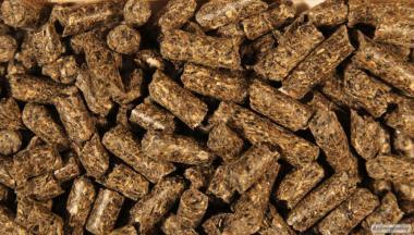 Продам ріпаковий шрот (гранульований)