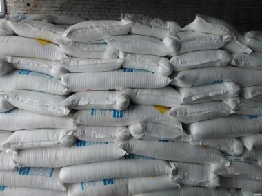 Семена кукурузы Пивиха, Велес, Хортица, Хотын, НС 2922,Даниил