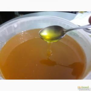 Продам новый натуральный мёд урожай 2017, Запорожская обл.