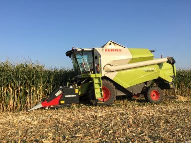 Зибирання кукурудзи