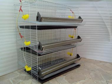 Клітки для перепелів від 44 до 636 голів