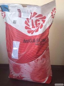 Насіння соняшнику Limagrain LG Мегасан