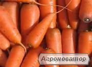 продается земельный участок 12 соток в пригороде Николаева
