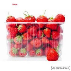 Пластиковая Пинетка для ягод