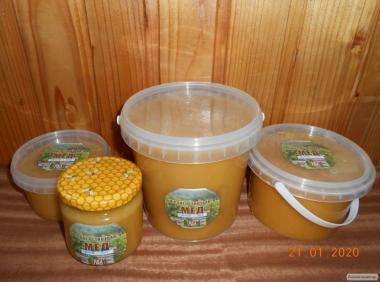 Лесной хвойный мед