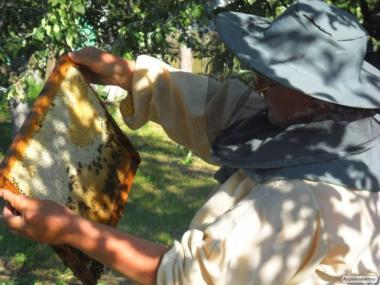 продаем разный мед со своей пасики