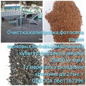 очищення зернових