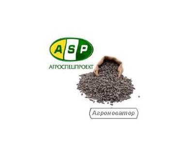 Семена подсолнечника Лейла F1 экстра (Агроспецпроект)