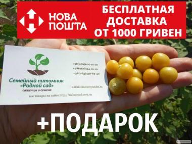 Физалис земляничный семена 50 шт фізаліс насіння + инструкции