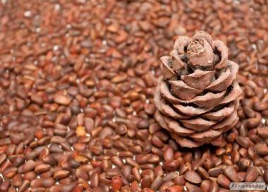 Кедровий горіх (в шкаралупі)