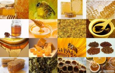 Купую мед / віск оптом без аналізів!