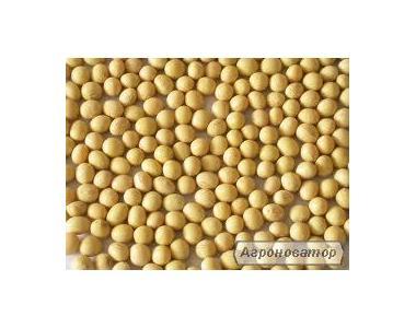 Продам насіння сої Алмаз, 1 репродукція!