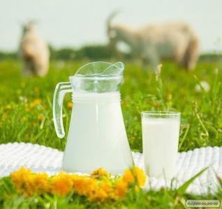 Козине молоко, сир, бринза