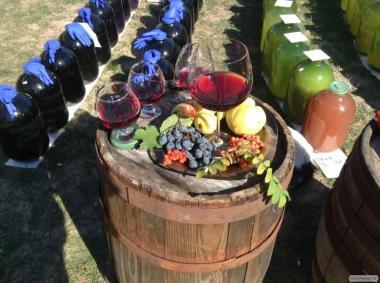 Продам натуральне сухе вино 2017 року - Мерло, Голубок, Одеський Ч.