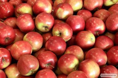 Яблука, Альдаред
