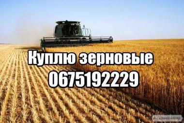 Куплю пшеницю, ячмінь, сою