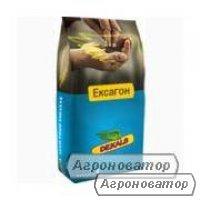 Семена озимого рапса Monsanto гибрид ДК Ексагон