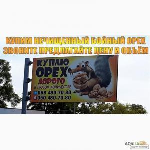 Куплю волоський горіх бійний, в шкаралупі, нечищенный, кругляк, Харків