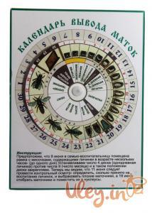 Календарь вывода маток