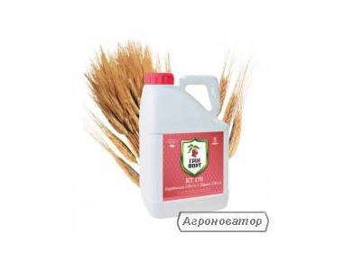 Гринфорт Стар (Максим Стар)флудиоксоніл 18,75 г/л + ципроконазал 6,25