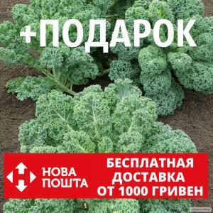 Капуста кейл семена 20 шт (листовая,кудрявая,кале,грюнколь, браунколь)