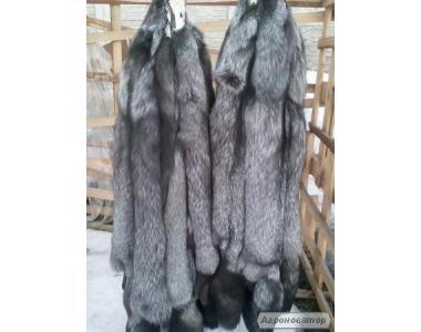 шкуры чернобурки