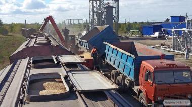 Погрузка зерновых в ж.д. вагоны без элеватора