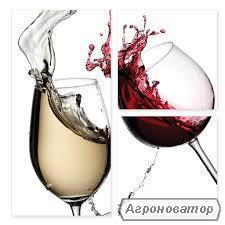 Молдавский коньяк,вино,чача,водка на разлив.