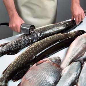 Рыбочистки электрические профессиональные