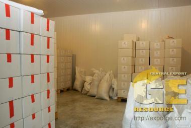 Оптові продажі волоського горіха, експорт, гарантія якості, обсяги.