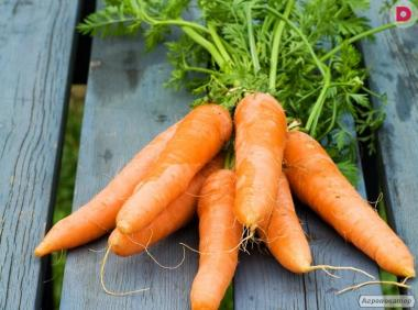 Продам моркву 2й сорт