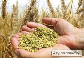 Гумат Калію від 20 грн./л (Власне виробництво)
