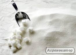 Продам цукор оптом