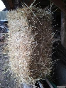 Продам солому пшеничную  в тюках 2017 г