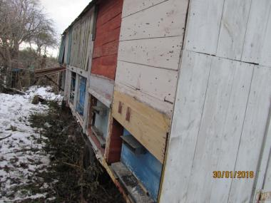 Продам бджолопавільйон без вуликів.