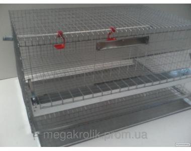 Клетки для кур несушек и бройлер