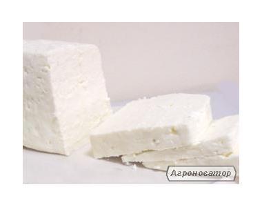 Бринза і сир з козячого молока
