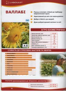 Семена подсолнечника Валлаби Лабуле (Laboulet)