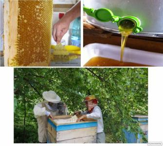 Продам мед (Акация, липа) 2017