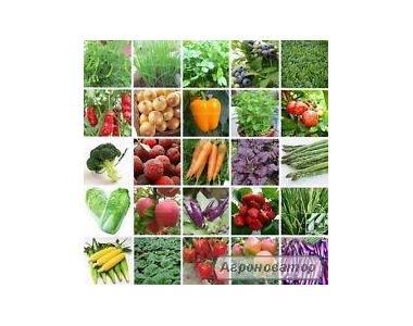 Весовые семена овощей.Польша.