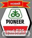 Семенат подсолнечника Пионер ЛЕ 25