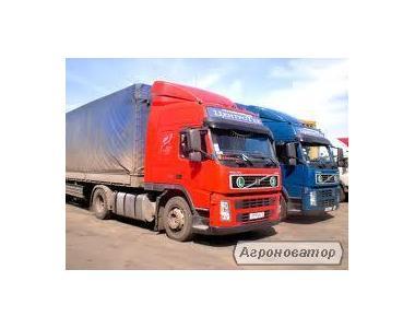 Надання транспортних та експедиційних послуг