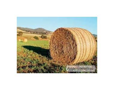 Продается сено, разнотравье