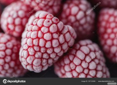 Заключим договор на поставку малины оптом