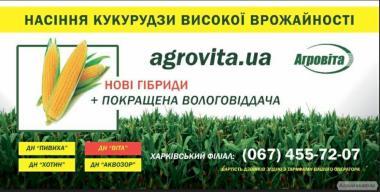 Продам гибрид Солонянский  298 СВ