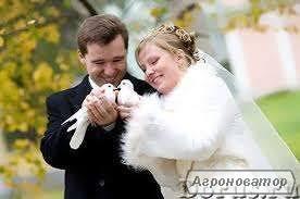 поштові голуби на весілля та ін. свята